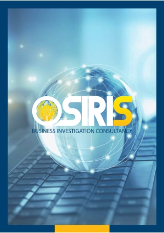 Business Investigation Consultancy Brochure