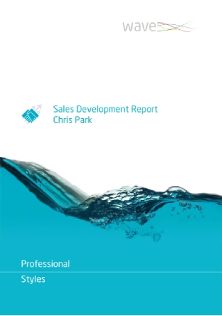 Sales Development Report