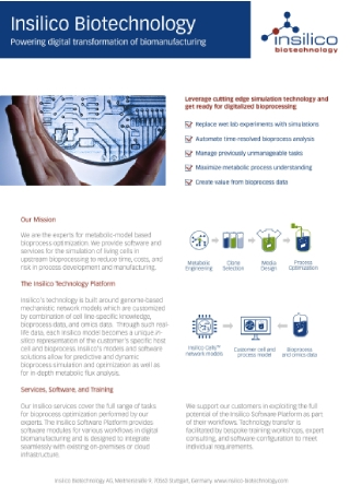 Technology Company Flyer