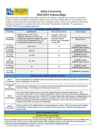 Academic Scholarship Flyer