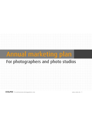 Annual Marketing Plan for Photographers