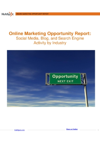 Online Marketing Opportunity Report