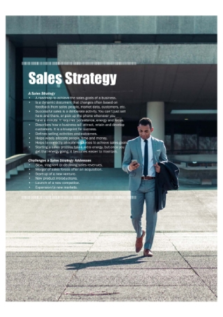 Sales Strategy Analysis