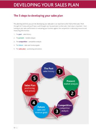 Sales Strategy Plan