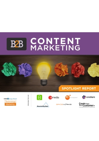 B2B Content Marketing Report