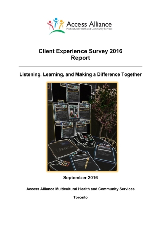 Client Experience Survey Report