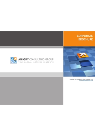 Consulting Company Brochure