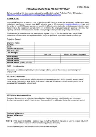 Probation Period Assessment Form