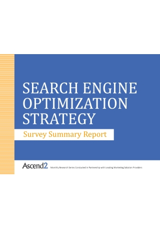SEO Strategy Survey Summary Report