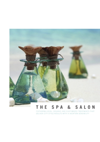 Spa and Salon Brochure