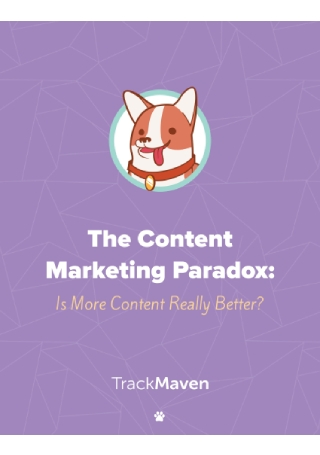 The Content Marketing Paradox