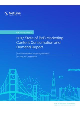 B2B Marketing Content Consumption Report