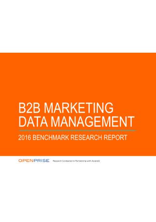 B2B Marketing Data Management