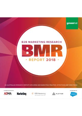 B2B Marketing Research Report