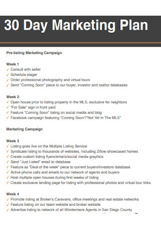 30 Day Marketing Plan Sample