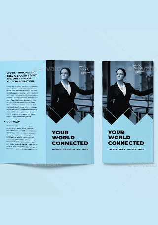 Advertising Consultant Trifold Brochure