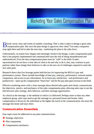 Basic Marketing Sales Plan