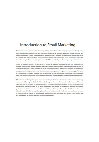 Business Email Marketing Sample
