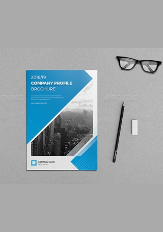 Company Profile Brochure Bundle