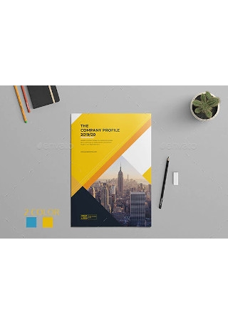 Company Profile Brochure Template InDesign