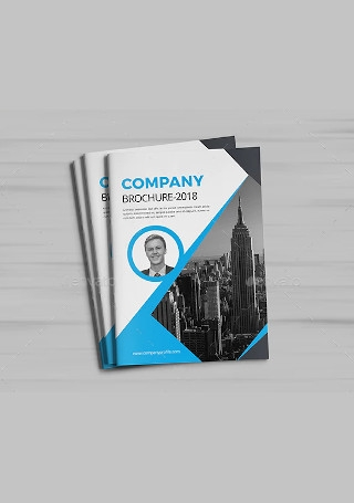 Creative Company Brochure InDesign