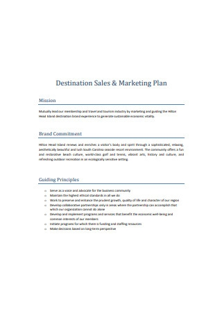 Destination Sales and Marketing Plan Sample