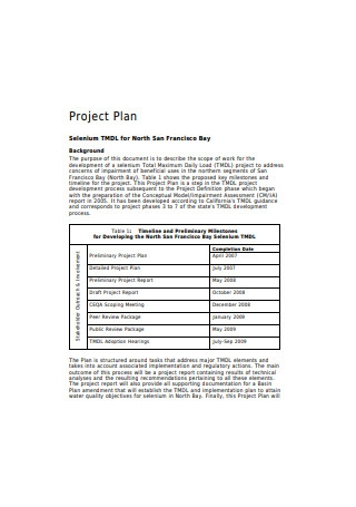 Development Project Plan Sample