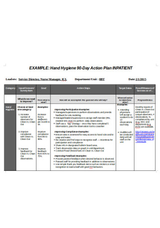 Director Action Plan Example