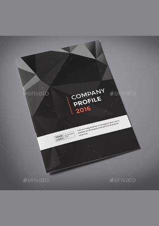 Elegant Company Profile Brochure