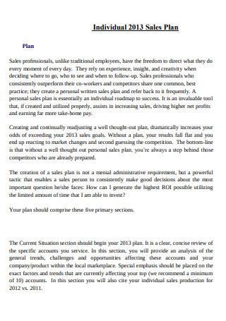 Individual Sales Plan Sample