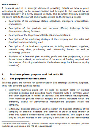 Intellectual property and business plans