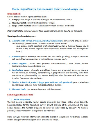 Market Agent Survey Questionnaire