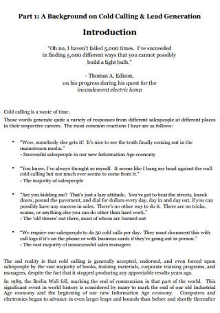 Sales Call Logs in PDF