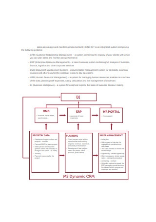 Sales Plan Design and Monitoring Sample