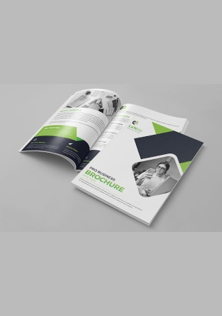 Sample Business Brochure Template