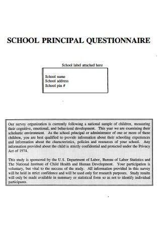 School Principal Questionnaire
