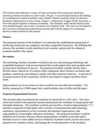 Simple Business Plan in PDF