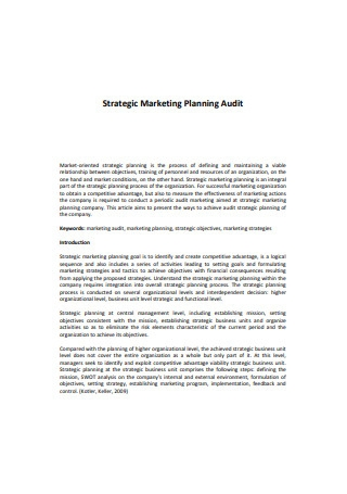 Strategic Marketing Planning Audit Sample