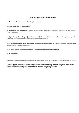 Term Project Proposal Format