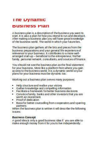 The Dynamic Business Plan