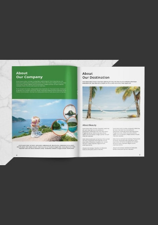 Travel Agency Brochure Sample