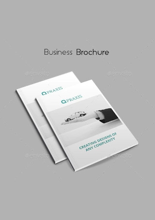 Vintage Business Brochure In Design
