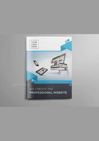 Website Design Brochure