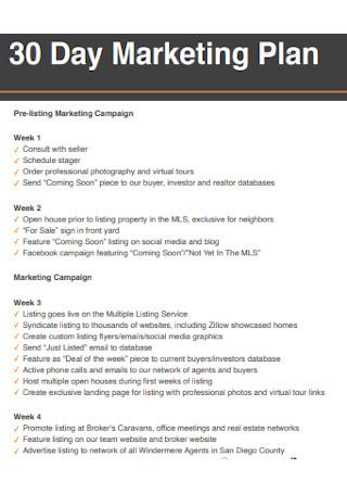 30 Day Marketing Plan Sample
