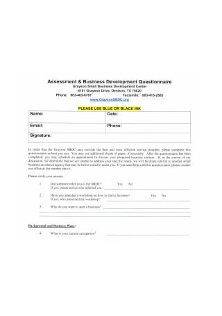 Assessment and Business Development Questionnaire