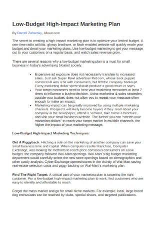Budget Marketing Plan Sample