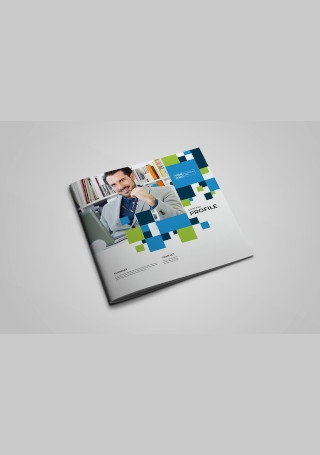 Business Company Brochure InDesign