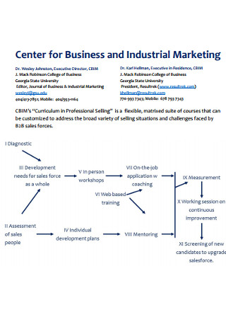 Business and Industrial Marketing Strategy
