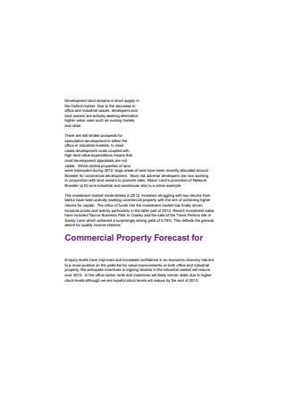 Commercial Property Survey Report