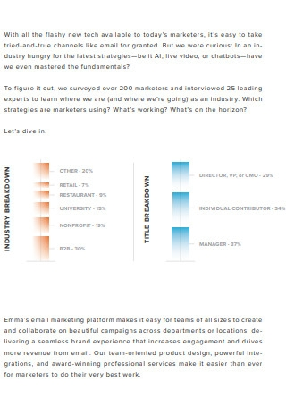 Email Marketing Industry Report